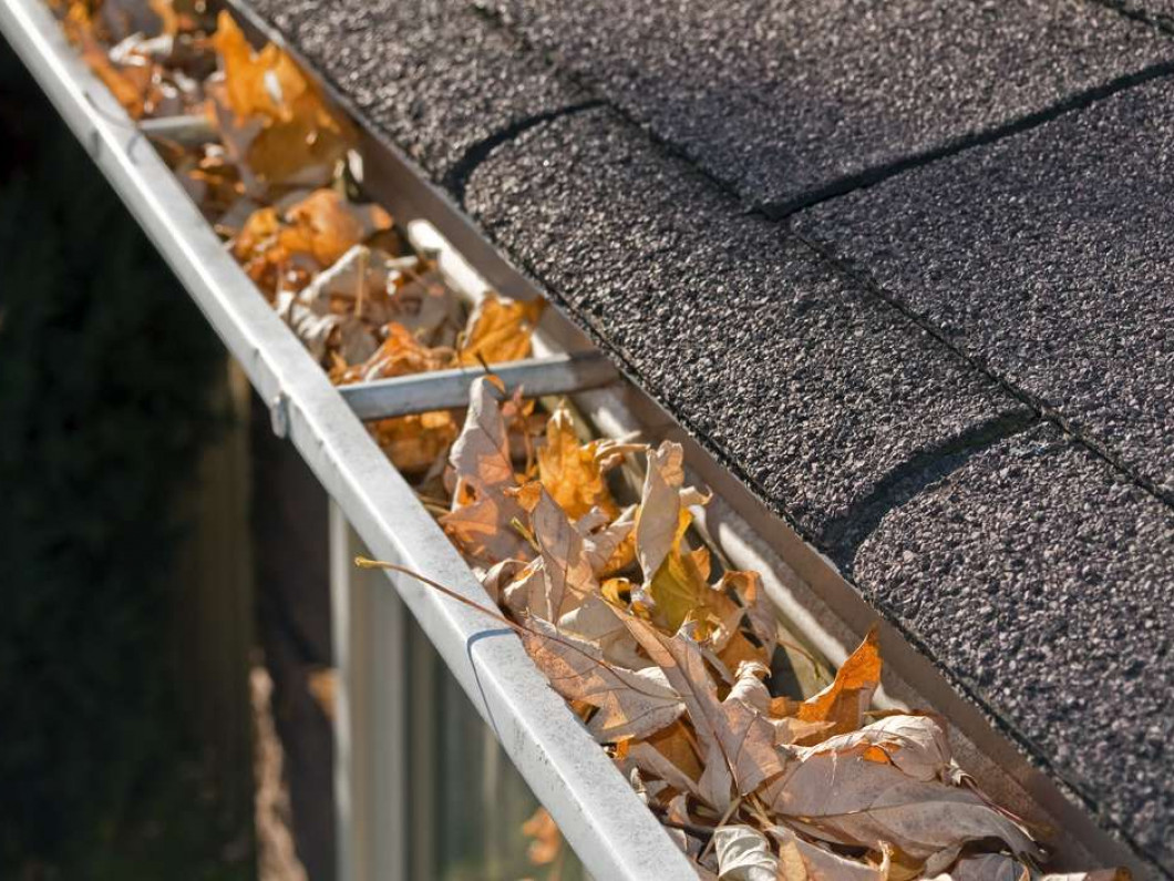 Keep your gutters in order with our gutter cleaning service